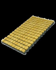 Stone Wool Tray - Cubos de 2